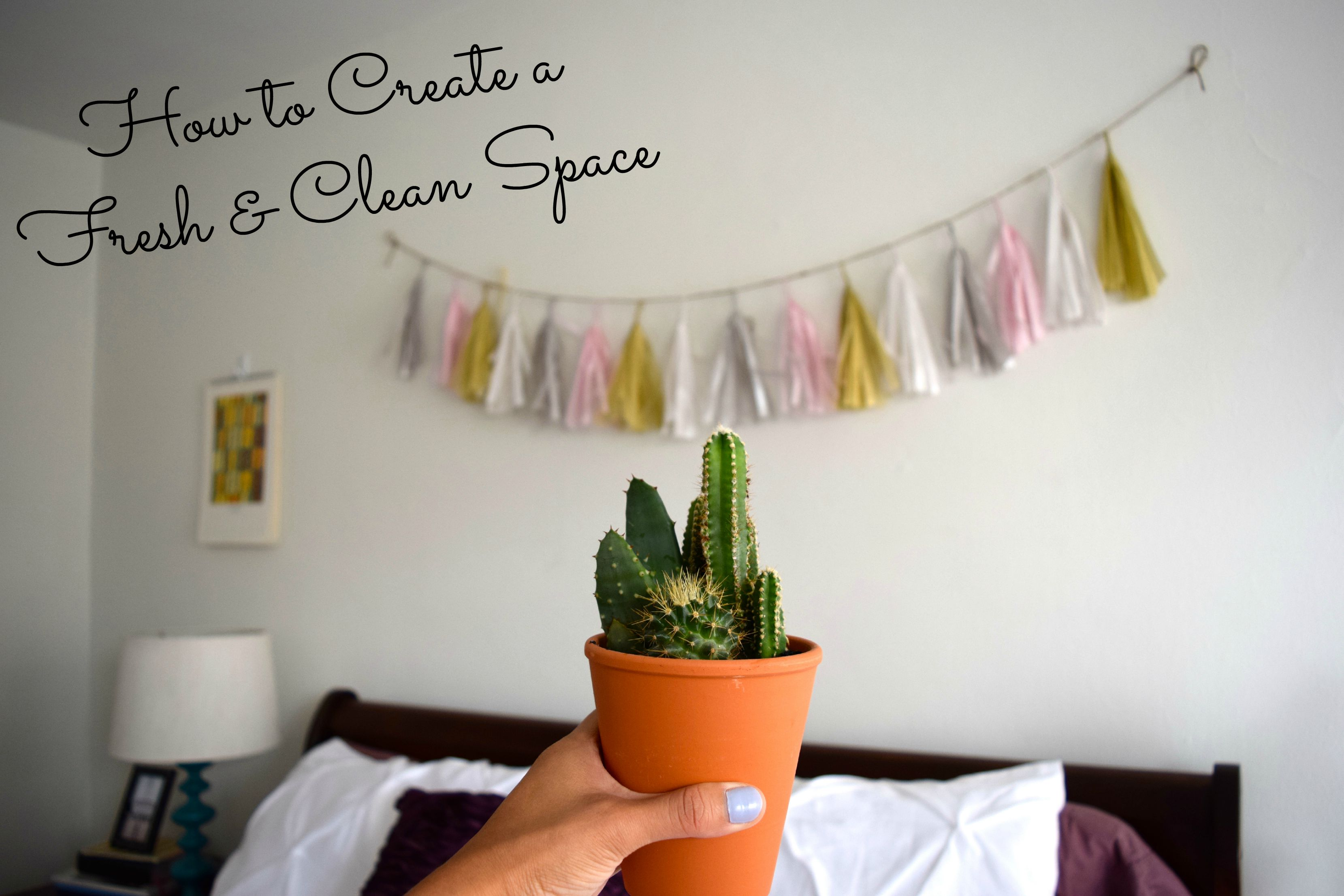 How to Create a Fresh & Clean Space