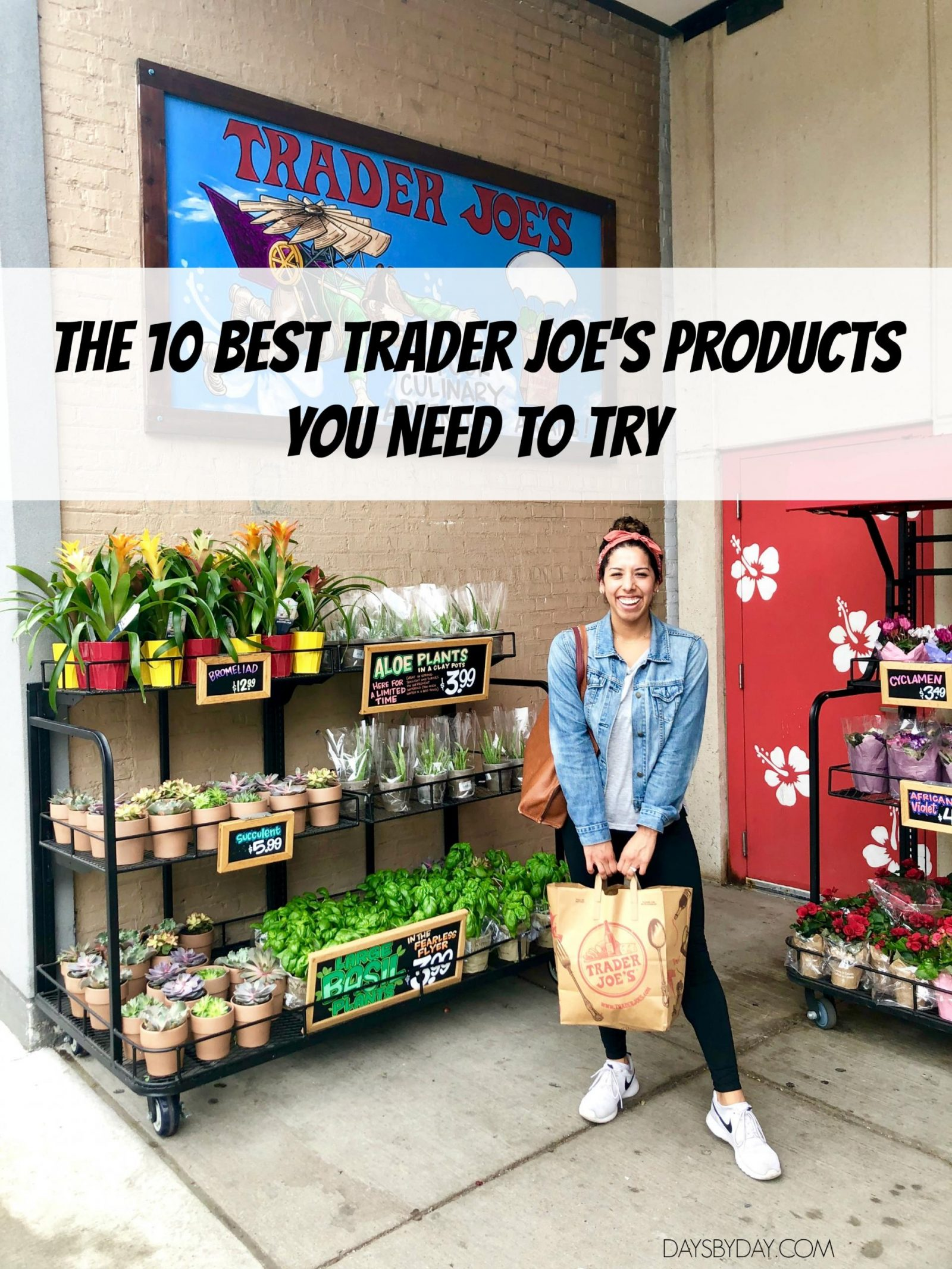 The 10 Best Trader Joe's Products You Need To Try